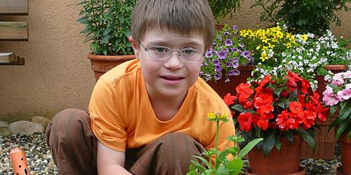 Un garçonnet rempote une plante dans le jardin